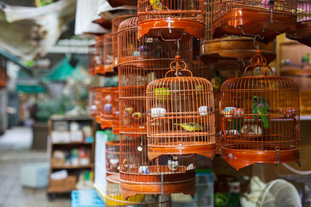 Photo for Birds in cages for sale at Birds market, Kowloon Hong Kong, popular tourist destination. - Royalty Free Image
