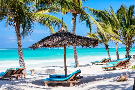 Photo pour Beach beds among palm trees at perfect white sand tropical coast - image libre de droit