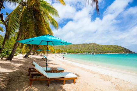 Photo for Idyllic tropical beach with white sand, palm trees and turquoise Caribbean sea water on Mayreau island in St Vincent and the Grenadines - Royalty Free Image