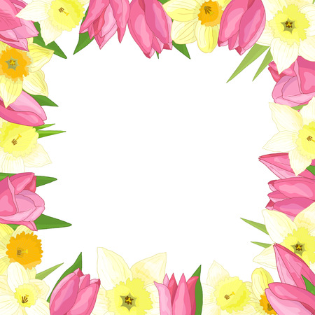 Illustration pour Vector frame of spring flowers: tulips and daffodils on white background - image libre de droit