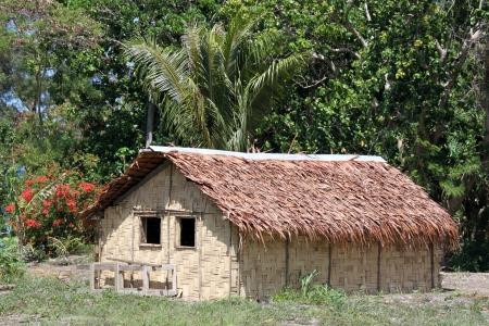 Hut and trees in Efate island, Vanuatu