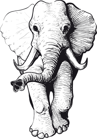 Illustration pour Wandering elephant with raised trunk type of head - image libre de droit