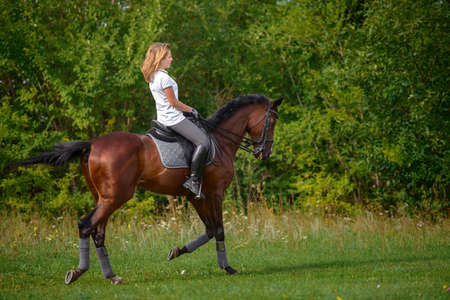 Photo for Portrait of a beautiful young girl rider and her brown horse - Royalty Free Image