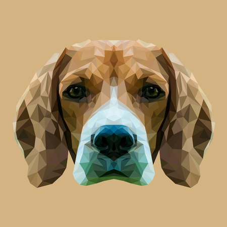 Illustration pour Beagle dog animal low poly design. Triangle vector illustration. - image libre de droit