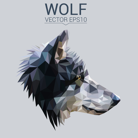 Illustration for Wolf low poly design. - Royalty Free Image