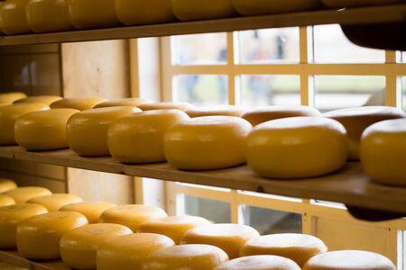Photo pour Cheese wheels on a shelf - image libre de droit