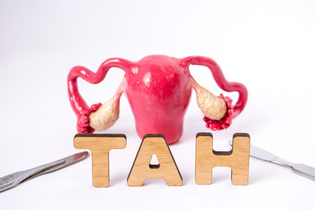 Photo pour Anatomical shape of uterus with ovaries is at slightly blurred background and in foreground are the letters which form medical acronym TAH (Total Abdominal Hysterectomy) with a focus on word - image libre de droit