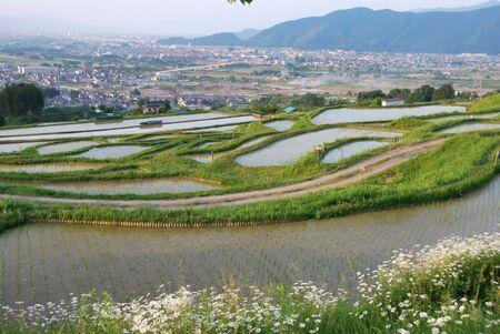 Shikibu090600003