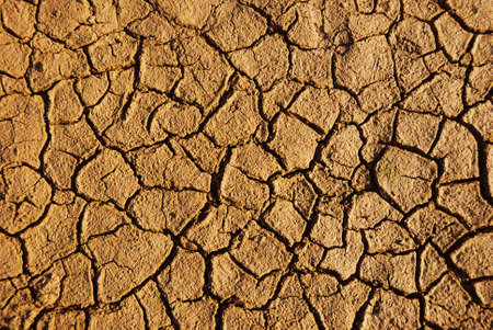 Dry weathered desert soil background with pattern of cracks