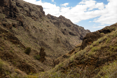 Beautiful landscapes of Barranco del Infierno in Tenerife.