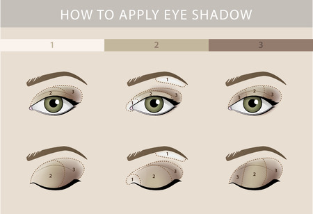 Eye makeup types template color beauty vector