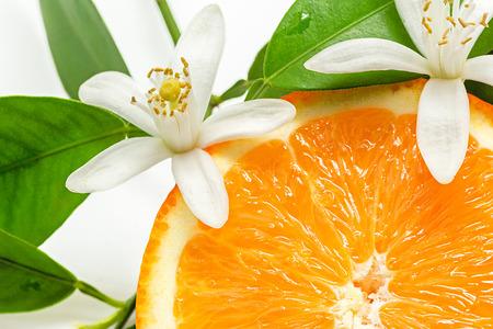 Photo pour Close up of  fresh orange fruit with leaves and blossom - image libre de droit