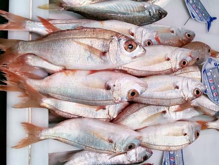 Foto de Fresh fishes in the market in Isla Cristina, Andalusia, Spain. - Imagen libre de derechos