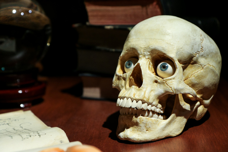 Photo pour The model of the skull with realistic eyes standing on the old table among the old books and glass ball. - image libre de droit