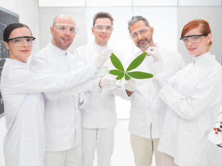 Group of five male and female scientists holding a genetically modified leaf in a genetics engineering laboratory smiling proudly at the camera