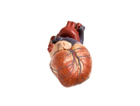 heart artificial