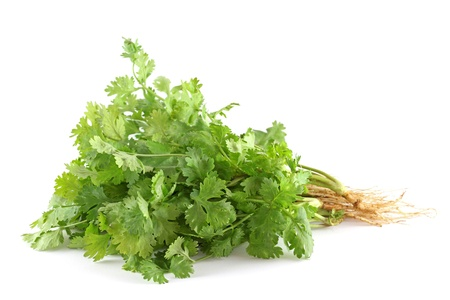 Closeup photo of fresh coriander (cilantro) with roots on white background