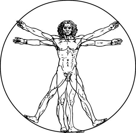 Leonardo da Vinci's vitruvian man in vector