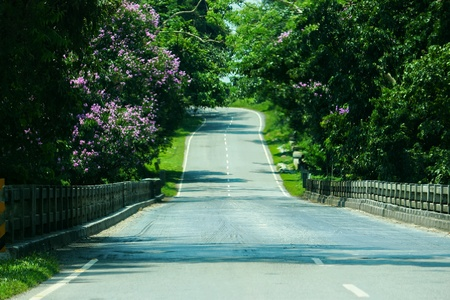 This is a hilly road Of Assam, India