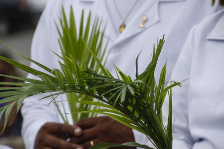 Photo for Holy Week. Traditional Catholic celebration Palm Sunday. Christian faith. - Royalty Free Image