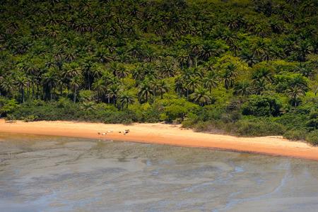 Coast of an island, Bissagos Archipelago (Bijagos), Guinea Bissau.