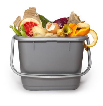 Kitchen composting bin