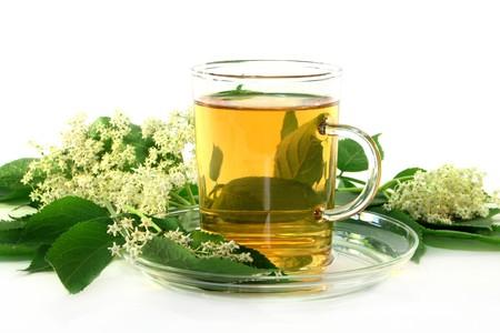 a cup of Elderflower tea with fresh flowers