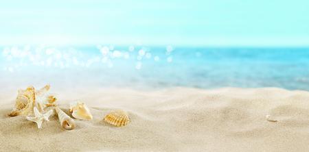 Foto de View of the sandy beach. Shells in the sand. - Imagen libre de derechos