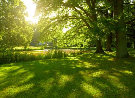 Foto de Summer park in Hamburg, Germany - Imagen libre de derechos