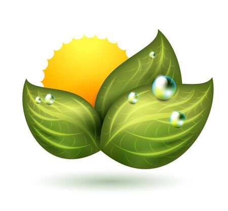 green symbol with leaf and sun