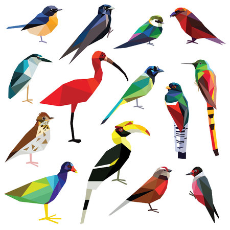 Birds-set colorful birds low poly design isolated on white background.Heron,Linet,Hornbill,Jay,Woodpecker,Flycatcher,Trogon,Gallinule,Martin,Crossbill,Comet,Ibis,Swallow,Thrush,Hummingbird.のイラスト素材