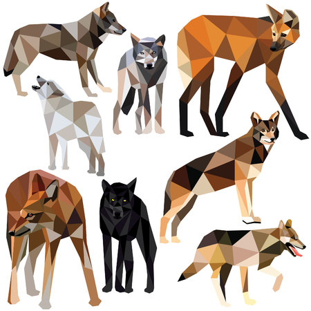 Illustration for Wolves set colorful low poly animal designs isolated on white background. illustration. Collection in a modern style. - Royalty Free Image