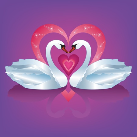 Illustration of two graceful  white swans with heart - the symbol of love and devotion. Vector illustration.