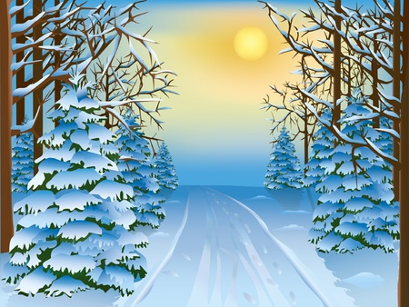 Beautiful realistic landscape - a winter forest. Vector illustration.