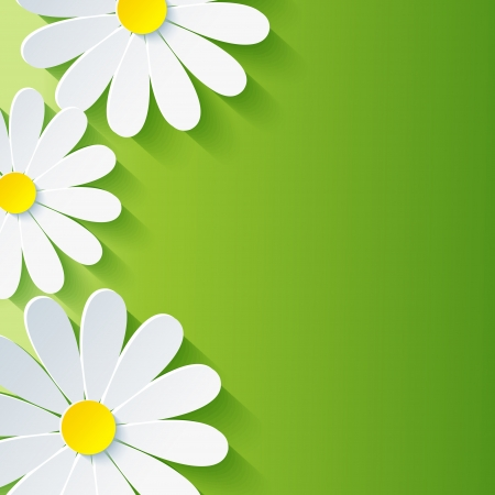 Spring abstract floral background with 3d flower chamomile  Vector background