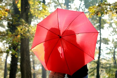 Silhouette of young couple behind umbrella in a forest