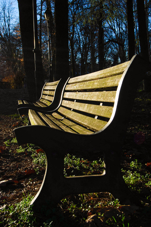 Benches in a municipal park illuminated by sunset