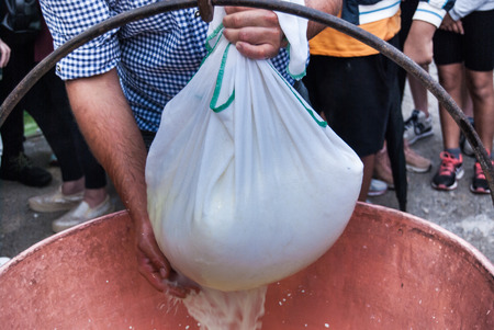 Cheesemaker showing the proceeding to make cheese from the milk