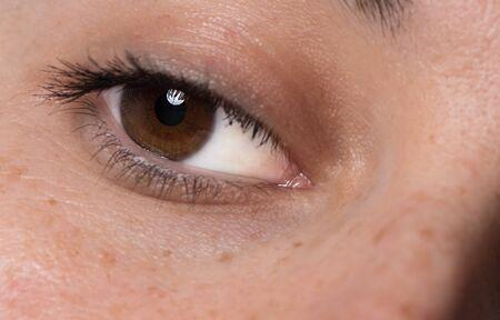 Photo pour Single Dark Brown Caucasian eye with mascara. Young women healthy eye close up with catchlight. Macro Shot - image libre de droit