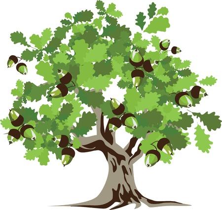 Big green oak tree illustration