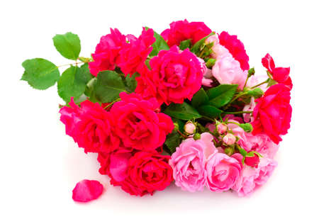 Photo pour Bouquet of red and pink roses isolated on white background. - image libre de droit