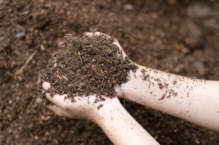 Soil mineral in farmer arms