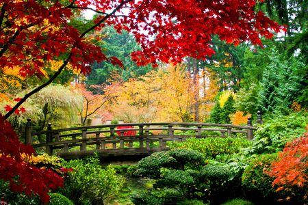 Photo pour A bridge in a japansese garden during Fall season - image libre de droit