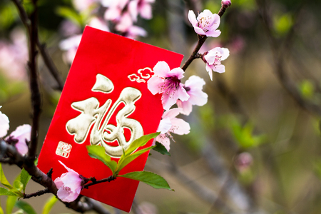 Chinese red packet and peach blossom