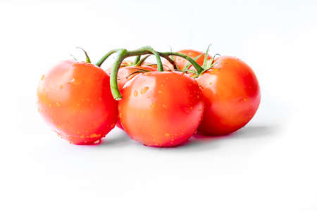 On a white background. No isolation. Red tomato on a green branch. There is a shadow