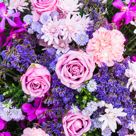 Photo for Colorful nature flower backgrounds - Royalty Free Image