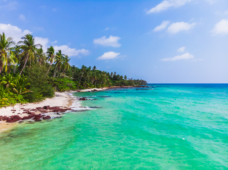 Aerial view of beautiful beach and sea with coconut palm tree on blue sky in the paradise island