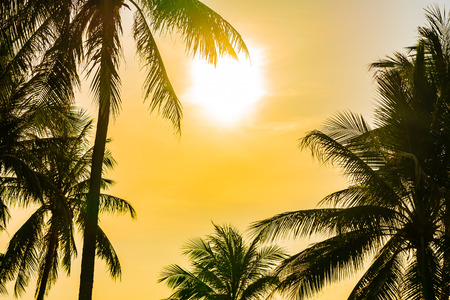 Photo pour Beautiful outdoor nature landscape with sea ocean and coconut palm tree around swimming pool in hotel resort at sunrsie or sunset for leisure travel and vacation - image libre de droit