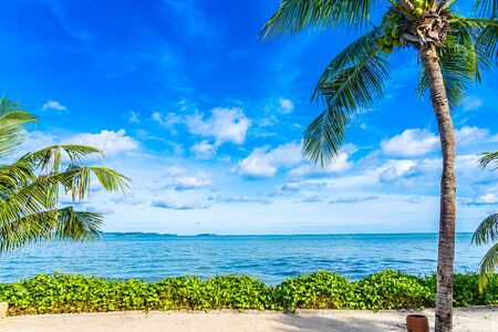 Photo for Beautiful landscape of beach sea ocean with coconut palm tree with white cloud and blue sky for leisure relax in holiday vacation - Royalty Free Image