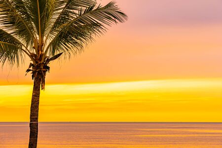 Photo pour Beautiful sea ocean beach with palm tree at sunrise time for holiday vacation - image libre de droit